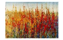 Wildflower Canvas