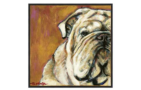 Bull Dog Canvas